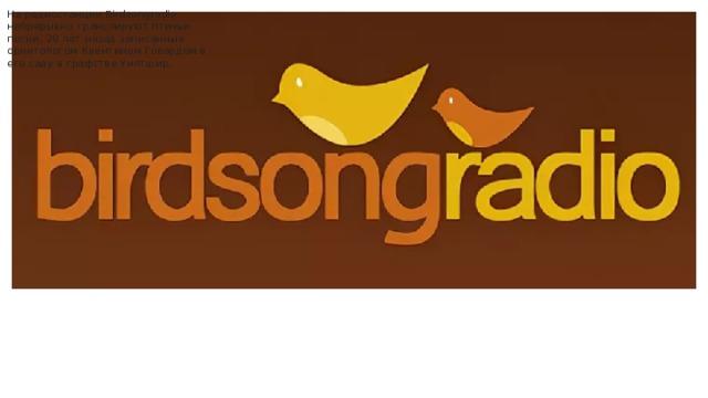 На радиостанции Birdsongradio непрерывно транслируют птичьи песни, 20 лет назад записанные орнитологом Квентином Говардом в его саду в графстве Уилтшир.