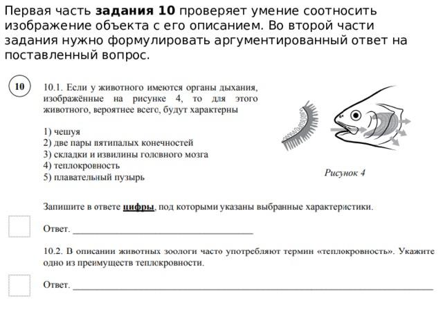 Первая часть задания 10 проверяет умение соотносить изображение объекта с его описанием. Во второй части задания нужно формулировать аргументированный ответ на поставленный вопрос.