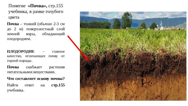 Понятие «Почва», стр.155 учебника, в рамке голубого цвета Почва – тонкий (обычно 2-3 см до 2 м) поверхностный слой земной коры, обладающий плодородием. ПЛОДОРОДИЕ – главное качество, отличающее почву от горной породы. Почва снабжает растения питательными веществами. Что составляет основу почвы? Найти ответ на стр.155 учебника.