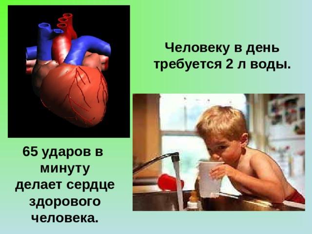 Человеку в день требуется 2 л воды. 65 ударов в минуту делает сердце здорового человека.