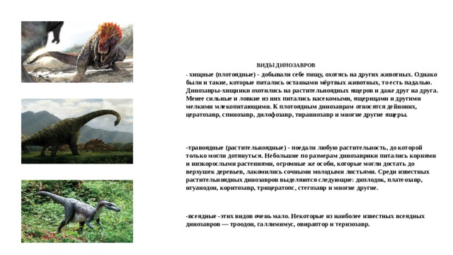 ВИДЫ ДИНОЗАВРОВ - хищные (плотоядные) - добывали себе пищу, охотясь на других животных. Однако были и такие, которые питались останками мёртвых животных, то есть падалью. Динозавры-хищники охотились на растительноядных ящеров и даже друг на друга. Менее сильные и ловкие из них питались насекомыми, ящерицами и другими мелкими млекопитающими. К плотоядным динозаврам относятся дейноних, цератозавр, спинозавр, дилофозавр, тираннозавр и многие другие ящеры. -травоядные (растительноядные) - поедали любую растительность, до которой только могли дотянуться. Небольшие по размерам динозаврики питались корнями и низкорослыми растениями, огромные же особи, которые могли достать до верхушек деревьев, лакомились сочными молодыми листьями. Среди известных растительноядных динозавров выделяются следующие: диплодок, платеозавр, игуанодон, коритозавр, трицератопс, стегозавр и многие другие. -всеядные -этих видов очень мало. Некоторые из наиболее известных всеядных динозавров — троодон, галлимимус, овираптор и теризозавр.
