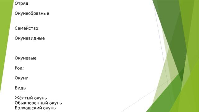 Отряд: Окунеобразные Семейство: Окуневидные Окуневые Род: Окуни Виды Жёлтый окунь Обыкновенный окунь Балхашский окунь