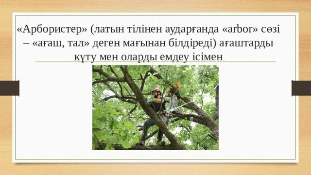 «Арбористер» (латын тілінен аударғанда «arbor» сөзі – «ағаш, тал» деген мағынан білдіреді) ағаштарды күту мен оларды емдеу ісімен