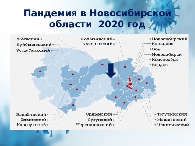 Пандемия в Новосибирской области 2020 год