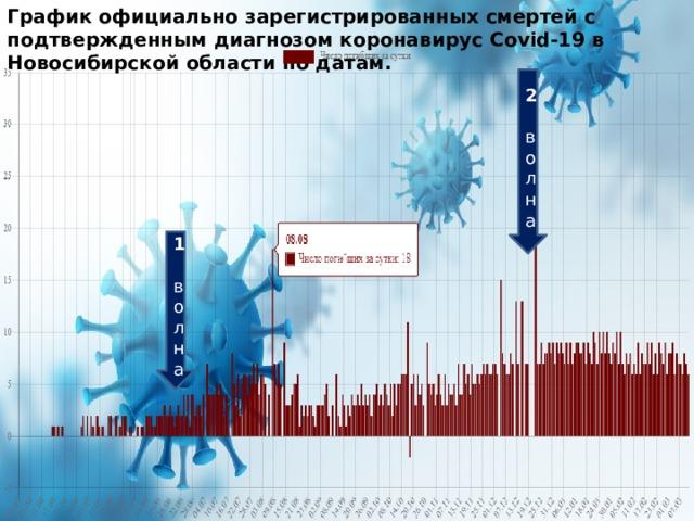 График официально зарегистрированных смертей с подтвержденным диагнозом коронавирус Covid-19 в Новосибирской области по датам. 2 волна 1 волна 1