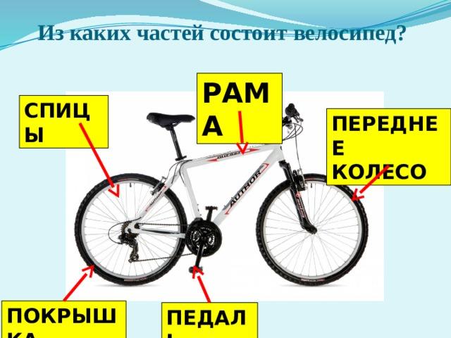 Из каких частей состоит велосипед? РАМА СПИЦЫ ПЕРЕДНЕЕ КОЛЕСО ПОКРЫШКА ПЕДАЛЬ
