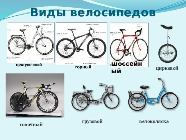 Виды велосипедов шоссейный цирковой грузовой велоколяска гоночный