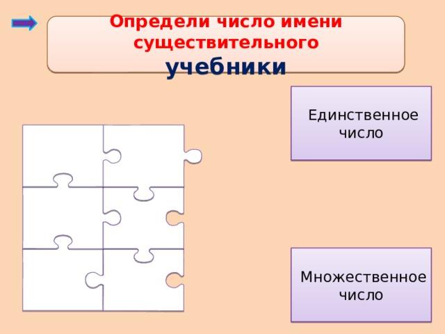 Определи число имени существительного учебники  Единственное число  Множественное число