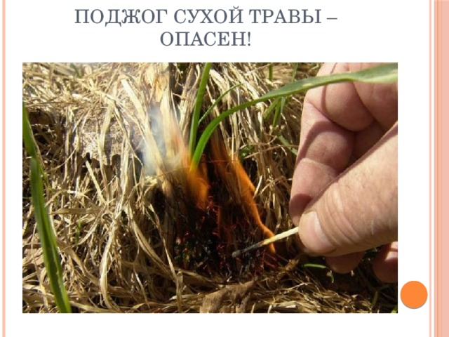Поджог сухой травы – опасен!