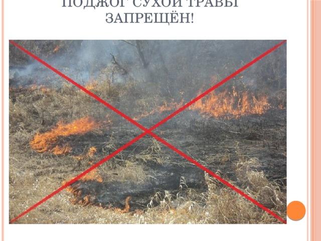 Поджог сухой травы запрещён!