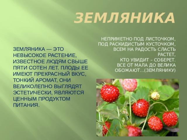 ЗЕМЛЯНИКА Земляника — это невысокое растение, известное людям свыше пяти сотен лет. Плоды ее имеют прекрасный вкус, тонкий аромат, они великолепно выглядят эстетически, являются ценным продуктом питания. Неприметно под листочком,  Под раскидистым кусточком,  Всем на радость сласть растет,  Кто увидит – соберет.  Все от мала до велика  Обожают…(Землянику)