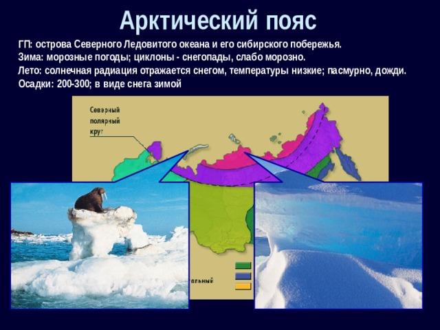 Арктический пояс ГП: острова Северного Ледовитого океана и его сибирского побережья. Зима: морозные погоды; циклоны - снегопады, слабо морозно. Лето: солнечная радиация отражается снегом, температуры низкие; пасмурно, дожди. Осадки: 200-300; в виде снега зимой