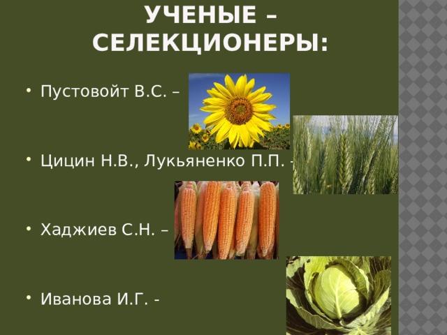 Ученые – селекционеры: