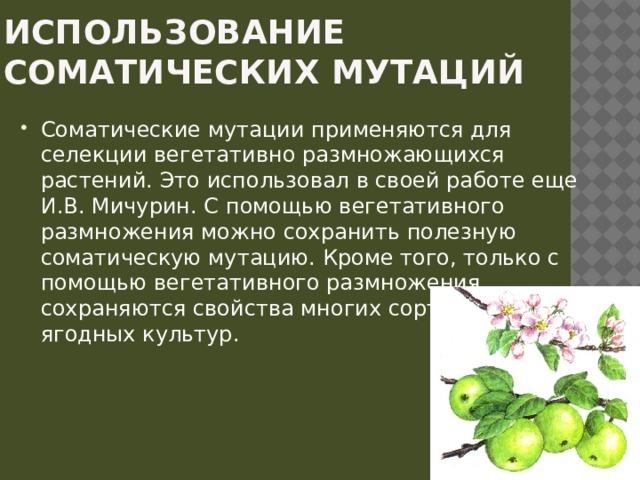 Использование соматических мутаций