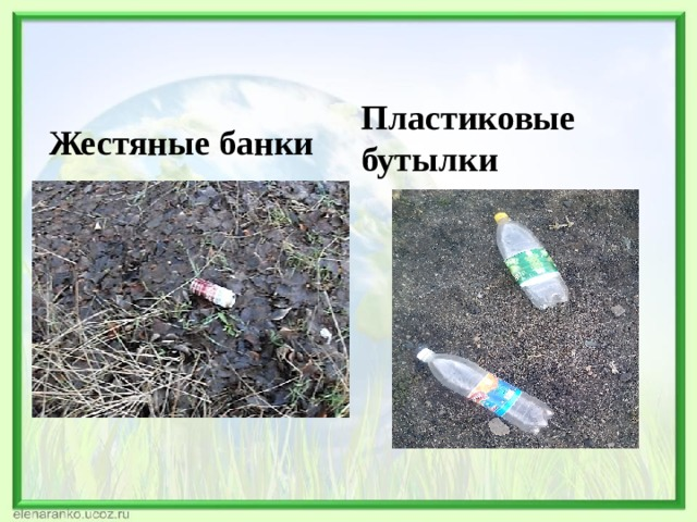 Пластиковые бутылки Жестяные банки