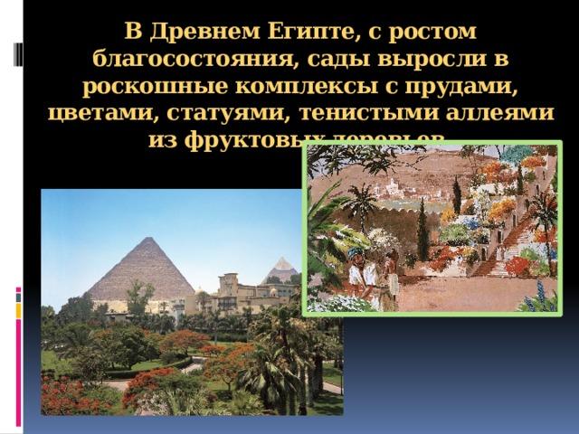 В Древнем Египте, с ростом благосостояния, сады выросли в роскошные комплексы с прудами, цветами, статуями, тенистыми аллеями из фруктовых деревьев.