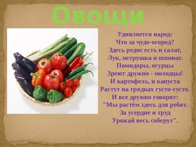Овощи Удивляется народ: Что за чудо-огород? Здесь редис есть и салат, Лук, петрушка и шпинат. Помидоры, огурцы Зреют дружно - молодцы! И картофель, и капуста Растут на грядках густо-густо. И все дружно говорят: