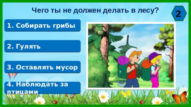 Чего ты не должен делать в лесу? 2 1. Собирать грибы 2. Гулять 3. Оставлять мусор 4. Наблюдать за птицами