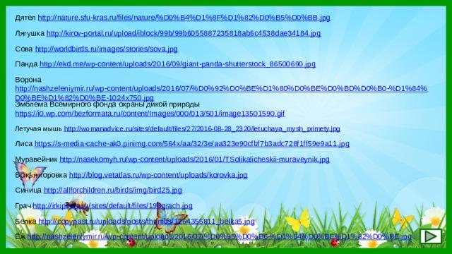 Дятел http://nature.sfu-kras.ru/files/nature/%D0%B4%D1%8F%D1%82%D0%B5%D0%BB.jpg  Лягушка http://kirov-portal.ru/upload/iblock/99b/99b6055887235818ab6c4538dae34184.jpg  Сова http://worldbirds.ru/images/stories/sova.jpg  Панда http://ekd.me/wp-content/uploads/2016/09/giant-panda-shutterstock_86500690.jpg  Ворона http://nashzeleniymir.ru/wp-content/uploads/2016/07/%D0%92%D0%BE%D1%80%D0%BE%D0%BD%D0%B0-%D1%84%D0%BE%D1%82%D0%BE-1024x750.jpg  Эмблема Всемирного фонда охраны дикой природы https://i0.wp.com/bezformata.ru/content/Images/000/013/501/image13501590.gif  Летучая мышь http://womanadvice.ru/sites/default/files/27/2016-08-28_2320/letuchaya_mysh_primety.jpg  Лиса https://s-media-cache-ak0.pinimg.com/564x/aa/32/3e/aa323e90cfbf7b3adc728f1ff59e9a11.jpg  Муравейник http://nasekomyh.ru/wp-content/uploads/2016/01/TSolikalicheskii-muraveynik.jpg  Божья коровка http://blog.vetatlas.ru/wp-content/uploads/korovka.jpg  Синица http://allforchildren.ru/birds/img/bird25.jpg  Грач http://irkipedia.ru/sites/default/files/196grach.jpg  Белка http://copypast.ru/uploads/posts/thumbs/1264355811_belka5.jpg  Ёж http://nashzeleniymir.ru/wp-content/uploads/2016/07/%D0%95%D0%B6-%D1%84%D0%BE%D1%82%D0%BE.jpg