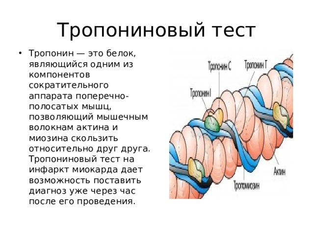 Тропониновый тест