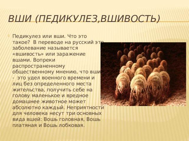 ВШИ (ПЕДИКУЛЕЗ,ВШИВОСТЬ)