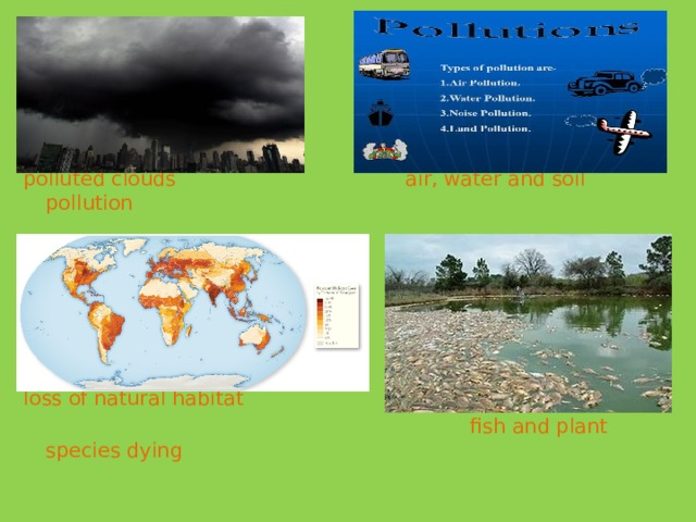 polluted clouds air, water and soil pollution loss of natural habitat  fish and plant species dying