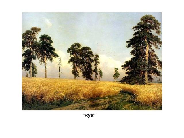 """"""" Rye"""""""