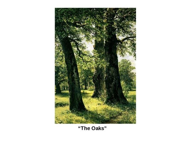 """ The Oaks"""