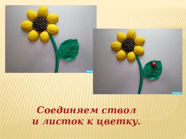 Соединяем ствол и листок к цветку.