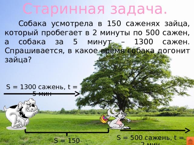 Старинная задача.  Собака усмотрела в 150 саженях зайца, который пробегает в 2 минуты по 500 сажен, а собака за 5 минут – 1300 сажен. Спрашивается, в какое время собака догонит зайца? S = 1300 сажень, t = 5 мин S = 500 сажень, t = 2 мин S = 150 сажень