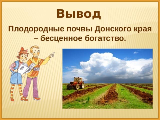 Вывод Плодородные почвы Донского края – бесценное богатство.