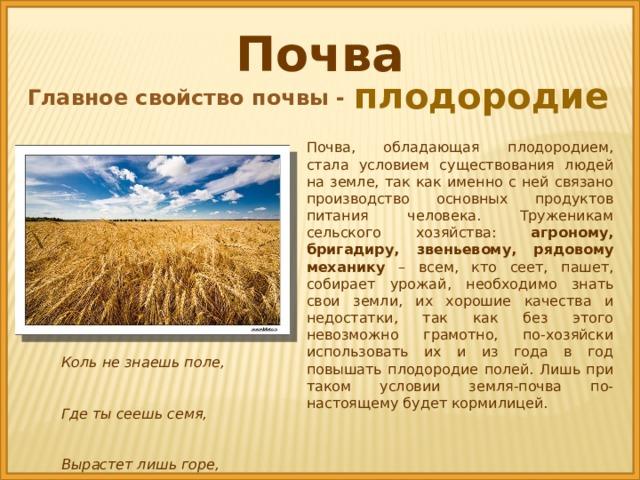 Почва плодородие Главное свойство почвы - Почва, обладающая плодородием, стала условием существования людей на земле, так как именно с ней связано производство основных продуктов питания человека. Труженикам сельского хозяйства: агроному, бригадиру, звеньевому, рядовому механику – всем, кто сеет, пашет, собирает урожай, необходимо знать свои земли, их хорошие качества и недостатки, так как без этого невозможно грамотно, по-хозяйски использовать их и из года в год повышать плодородие полей. Лишь при таком условии земля-почва по-настоящему будет кормилицей. Коль не знаешь поле, Где ты сеешь семя, Вырастет лишь горе, Труд погибнет, время .