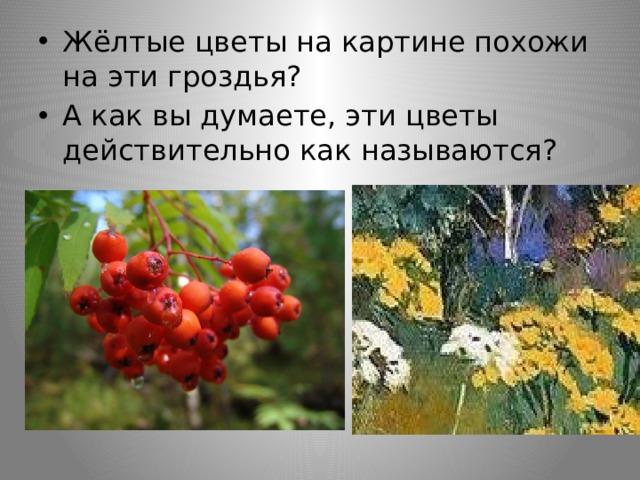 Жёлтые цветы на картине похожи на эти гроздья? А как вы думаете, эти цветы действительно как называются?