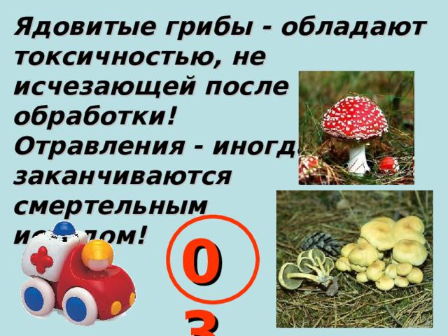 Ядовитые грибы - обладают токсичностью, не исчезающей после обработки! Отравления - иногда заканчиваются смертельным исходом! 03