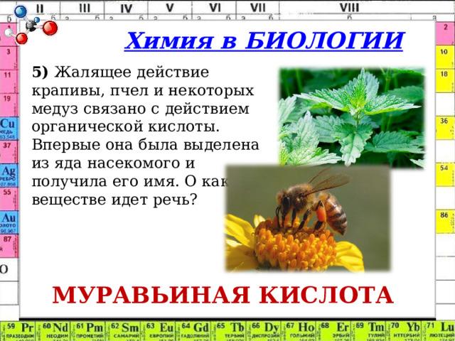 Химия в БИОЛОГИИ 5) Жалящее действие крапивы, пчел и некоторых медуз связано с действием органической кислоты. Впервые она была выделена из яда насекомого и получила его имя. О каком веществе идет речь? МУРАВЬИНАЯ КИСЛОТА