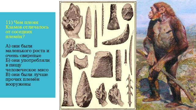 11) Чем племя Кзамов отличалось от соседних племён?   А) они были маленького роста и очень свирепые  Б) они употребляли в пищу человеческое мясо  В) они были лучше прочих племён вооружены