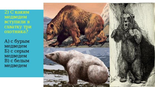 2) С каким медведем вступили в схватку три охотника?   А) с бурым медведем  Б) с серым медведем  В) с белым медведем