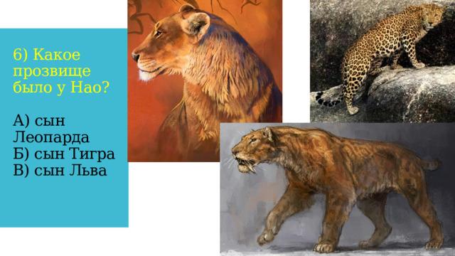 6) Какое прозвище было у Нао?   А) сын Леопарда  Б) сын Тигра  В) сын Льва