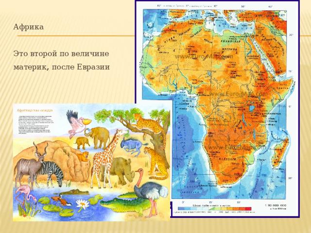 Африка   Это второй по величине материк , после Евразии
