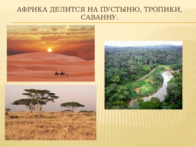 Африка делится на пустыню, тропики, саванну.