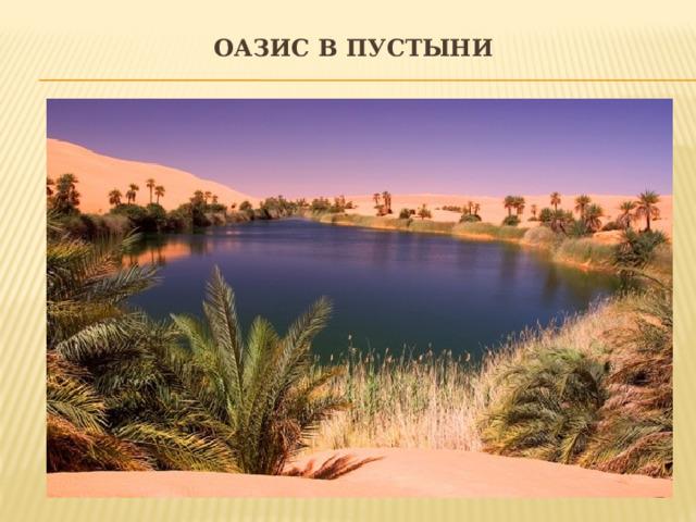 Оазис в пустыни