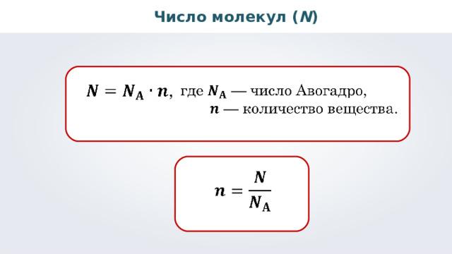 Число молекул ( N )