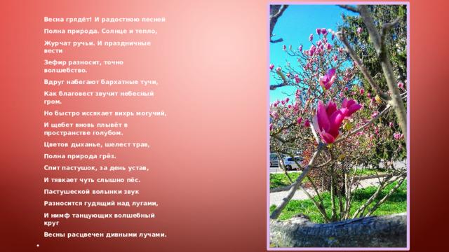 Весна грядёт! И радостною песней Полна природа. Солнце и тепло, Журчат ручьи. И праздничные вести Зефир разносит, точно волшебство. Вдруг набегают бархатные тучи, Как благовест звучит небесный гром. Но быстро иссякает вихрь могучий, И щебет вновь плывёт в пространстве голубом. Цветов дыханье, шелест трав, Полна природа грёз. Спит пастушок, за день устав, И тявкает чуть слышно пёс. Пастушеской волынки звук Разносится гудящий над лугами, И нимф танцующих волшебный круг Весны расцвечен дивными лучами.