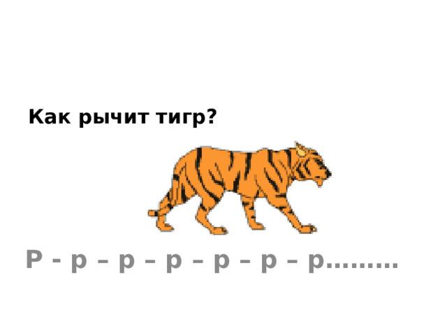 Как рычит тигр? Р - р – р – р – р – р – р………