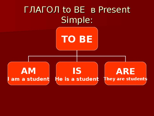 ГЛАГОЛ to BE в Present Simple: TO BE AM I am a student IS He is a student ARE They are students