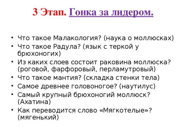 3 Этап. Гонка за лидером.