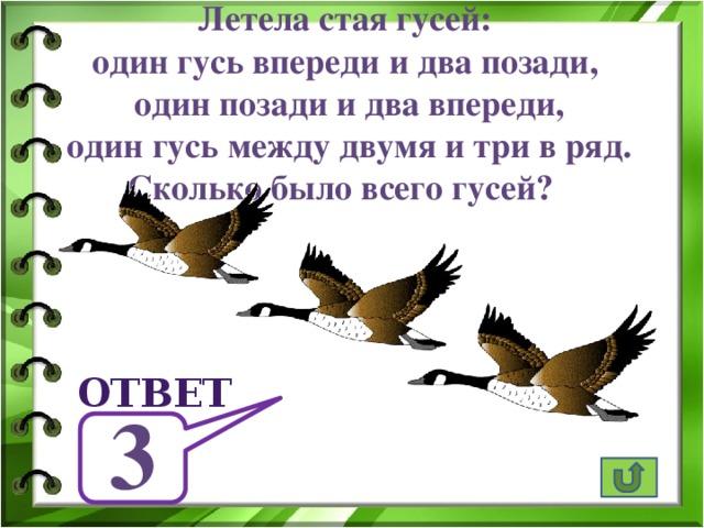 Летела стая гусей: один гусь впереди и два позади,  один позади и два впереди, один гусь между двумя и три в ряд. Сколько было всего гусей? ответ 3