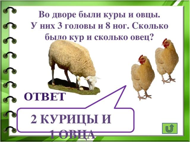 Во дворе были куры и овцы. У них 3 головы и 8 ног. Сколько было кур и сколько овец? ответ 2 курицы и 1 овца