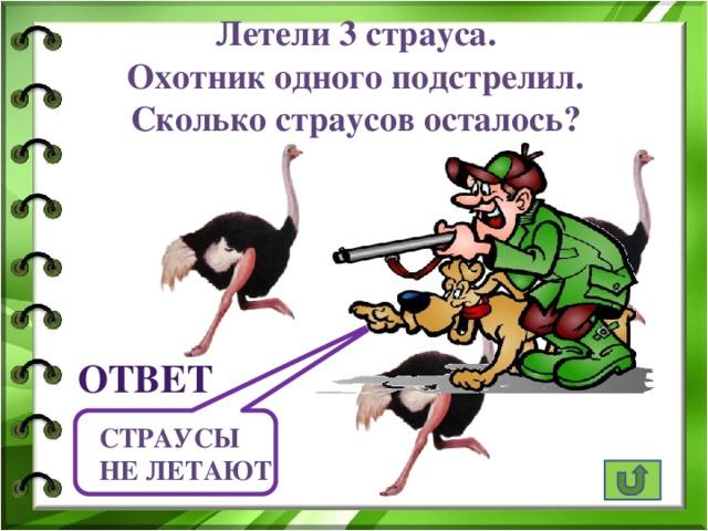 Летели 3 страуса. Охотник одного подстрелил. Сколько страусов осталось? ответ Страусы не летают