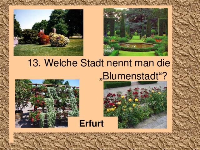 """13. Welche Stadt nennt man die """"Blumenstadt""""?  Erfurt"""